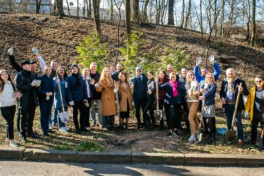 GOLAW law firm organized a tree planting in the Kyiv Botanical Garden