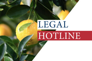 Legislative news digest: LEGAL HOTLINE 04.06.2020
