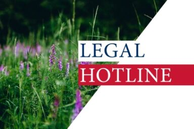 Legislative news digest: LEGAL HOTLINE 30.07.2020